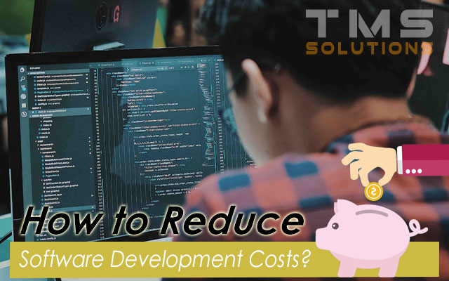Reduce Software Development Costs